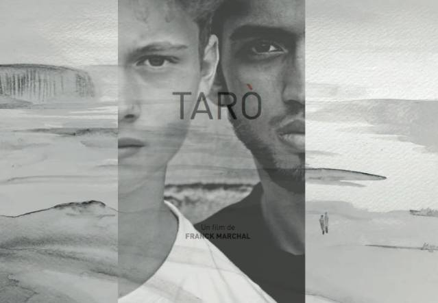 taro4
