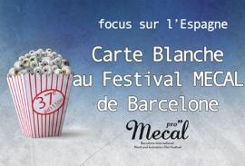 carton-carte-blanche-mecal581331a97f8ed
