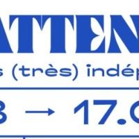 Du 7 au 19 février, FESTIVAL LES INATTENDUS à Lyon